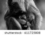 love   Shutterstock . vector #611725808
