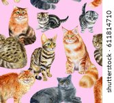 Stock photo seamless pattern with cats watercolor hand drawn illustration 611814710