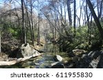 stream running through a forest ... | Shutterstock . vector #611955830