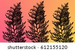 colorful fern pattern... | Shutterstock . vector #612155120