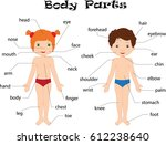boy and girl unclothed. body... | Shutterstock . vector #612238640