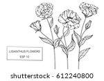 drawing flowers. vector... | Shutterstock .eps vector #612240800