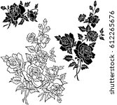 hand drawn flowers vector set | Shutterstock .eps vector #612265676