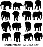 african elephant and asian...   Shutterstock .eps vector #612266429