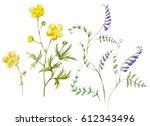 Watercolor Set  Botanical...