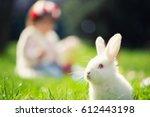 Easter Rabbit In Green Grass...