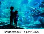 dubai. summer 2016. two boys... | Shutterstock . vector #612443828