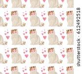 exotic shorthair cat breed... | Shutterstock .eps vector #612492518