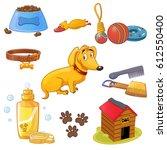 dog accessories set. collar ... | Shutterstock .eps vector #612550400