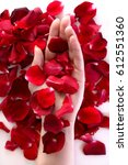 beautiful woman hand among red... | Shutterstock . vector #612551360