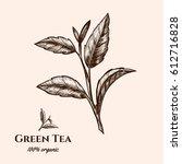 vector background with green... | Shutterstock .eps vector #612716828