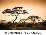 african savannah in the dusty... | Shutterstock . vector #612726020