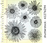 Sketches Of Blooms On Squared...