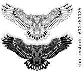 eagle flying on white...   Shutterstock . vector #612781139