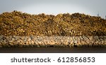piled wooden breeches over...   Shutterstock . vector #612856853