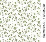 olive branch   Shutterstock .eps vector #612885230