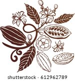 cacao beans plant | Shutterstock .eps vector #612962789