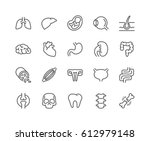 Simple Set of Internal Organs Related Vector Line Icons.  Contains such Icons as Reproductive System, Brain, Heart, Blood Vessel and more. Editable Stroke. 48x48 Pixel Perfect.