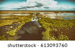 aerial view of everglades...   Shutterstock . vector #613093760
