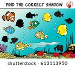 funny fishes. find the correct... | Shutterstock .eps vector #613113950