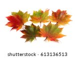 autumn maple leaves | Shutterstock . vector #613136513