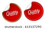 premium quality stickers | Shutterstock .eps vector #613137290