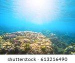 coral reef under sunlight flare ... | Shutterstock . vector #613216490