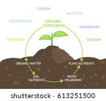 diagram of nutrients in organic ... | Shutterstock .eps vector #613251500