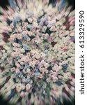 radial blur   many flowers... | Shutterstock . vector #613329590
