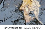 crude oil spill on the stone at ...