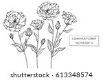 drawing flowers. lisianthus... | Shutterstock .eps vector #613348574