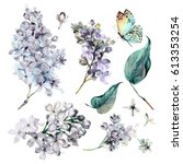 Stock photo watercolor collection of white lilac flowers leaves and butterfly isolated on white background 613353254