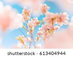 closeup spring nature landscape.... | Shutterstock . vector #613404944