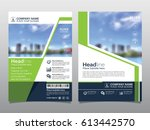 brochure  flyer  leaflet  cover ... | Shutterstock .eps vector #613442570
