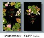vector tropical plants vertical ...   Shutterstock .eps vector #613447613