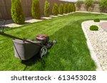 lawn mower on green grass  | Shutterstock . vector #613453028