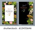 vector tropical plants vertical ... | Shutterstock .eps vector #613453646