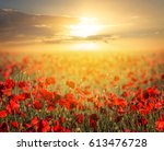 red poppy field at the sunset | Shutterstock . vector #613476728