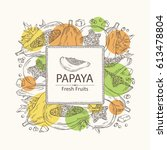 background with papaya and... | Shutterstock .eps vector #613478804
