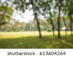 abstract blur city park bokeh... | Shutterstock . vector #613604264