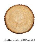 large circular piece of wood... | Shutterstock . vector #613662524