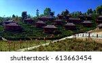 thailand village with greentea...   Shutterstock . vector #613663454