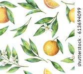 Watercolor Fruit Orange...
