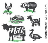 set of logos farm animals with... | Shutterstock .eps vector #613706774