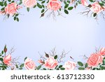 card with delicate flowers... | Shutterstock .eps vector #613712330