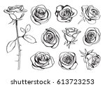 roses hand drawn set. black... | Shutterstock .eps vector #613723253