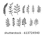 hand drawn laurel wreath set | Shutterstock .eps vector #613724540