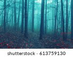 misty forest in the morning... | Shutterstock . vector #613759130