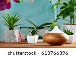 Aroma Oil Diffuser And Plants...