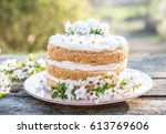 pink weedding cake in naked... | Shutterstock . vector #613769606